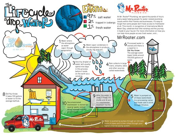 water cycle infographic